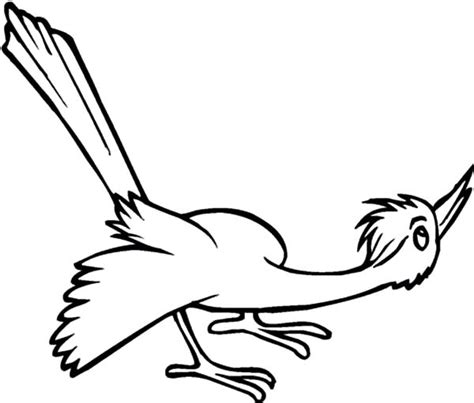 Image Cuckoo Bird Coloring Page Pages