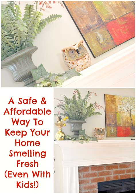 how to keep your house from smelling like a dog keep house from smelling like a safe affordable way to keep your home smelling fresh