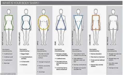 Body Types And Shapes | shoeʞrave understand your body type