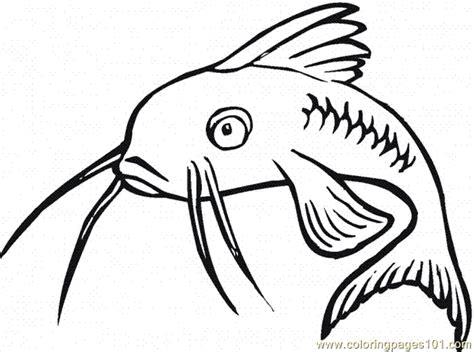 catfish coloring page catfish 16 coloring page free catfish coloring pages