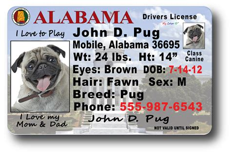 alabama id card template pin ohio drivers license template on