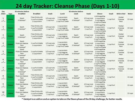 Prep Phase Detox System by Best 25 24 Day Challenge Guide Ideas On