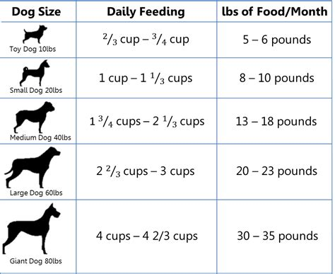 how much food to feed a puppy feeding suggestion for dogs lake erie pet food co