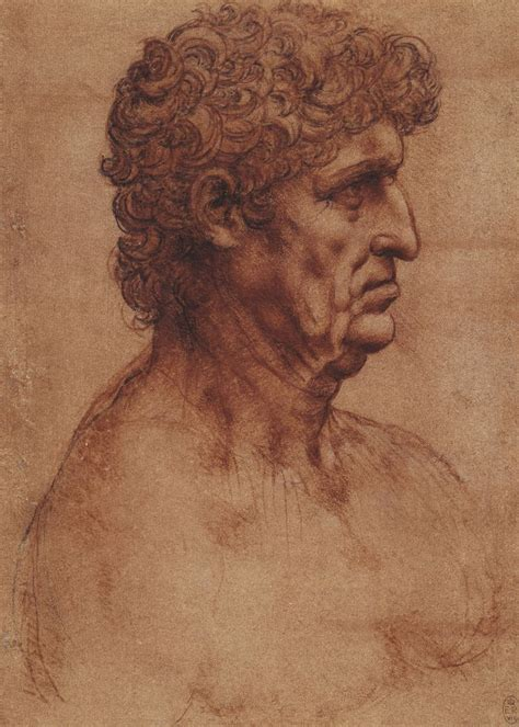 leonardo da vinci the leonardo da vinci the bust of a man in profile ca 1510 master portrait drawings