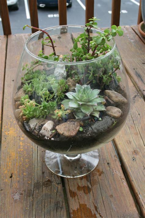Sukkulenten Pflanzen by Sukkulenten Im Glas Im Blickfang Kreative Deko Ideen Mit