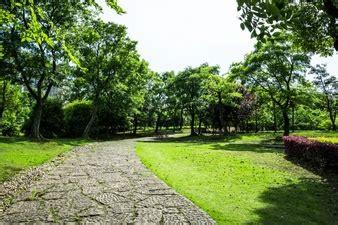 bangkok garden 9