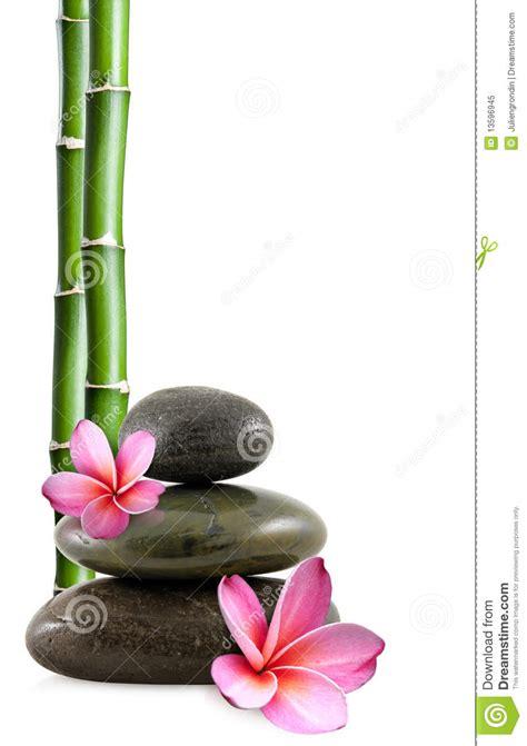 imagenes zen bambu piedras flores y bamb 250 del zen foto de archivo libre de