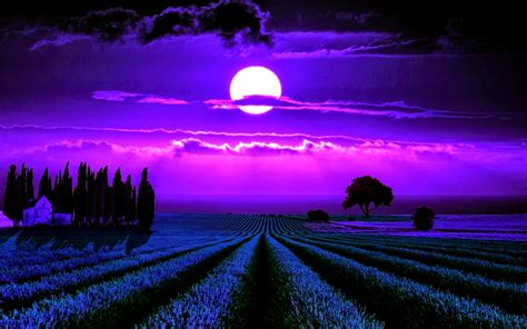 Wall Paper On Ceiling by 1920x1200 Moonlight Lavender Desktop Pc And Mac Wallpaper