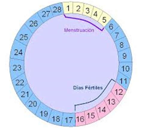 Calendario Para Calcular Embarazo Calculadora De Embarazo Conoce La Mejor Fecha Para Concebir