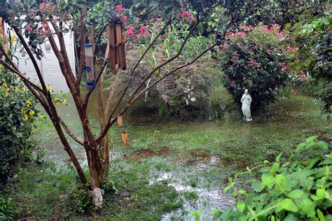 how to stop my backyard from flooding preventing flooding in your backyard