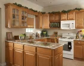 Honey Oak Kitchen Cabinets Wall Color by Decoraci 243 N De Cocinas Chicas Ideas Para Ahorrar Espacio