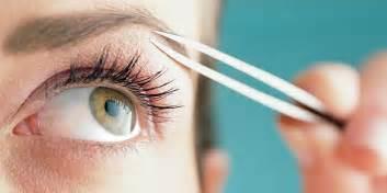 how to tweeze your eyebrows apps directories