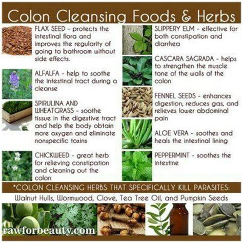 How To Make Colon Detox by Colon Cleansing Health Fitnnes