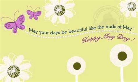 happy may day cards www pixshark com images galleries may day quotes and sayings quotesgram
