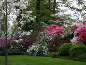 beautiful privacy landscaping garden pinterest