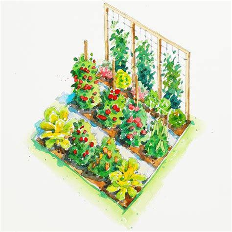 plans for vegetable gardens vegetable garden plans