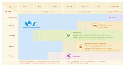 svezzamento schema alimentare weaning by stage holle baby food