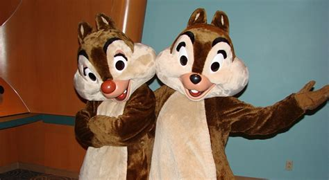 chip n dale costume pin by mascotshows steven on chip and dale costume