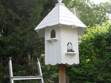 dove bird house plans numberedtype