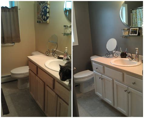 painting bathroom cabinets ideas outstanding doit your shelf repainted neutral oak wood