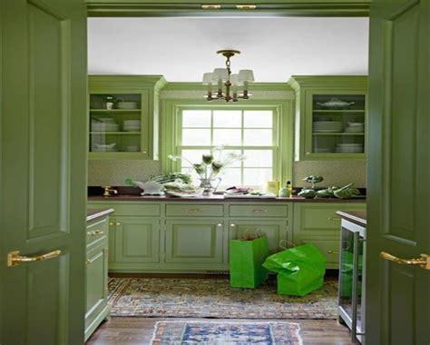 Sage green kitchen storage set, dark purple wall color