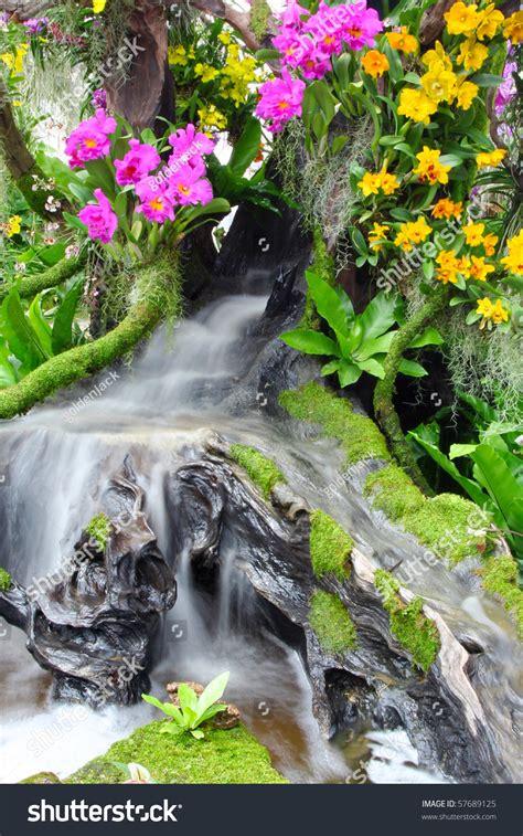 beautiful waterfalls with flowers beautiful flowers and waterfall stock photo 57689125