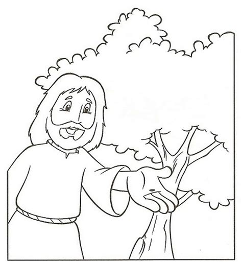mustard tree coloring page parable of the mustard seed coloring pages
