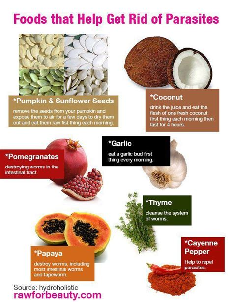 139 best images about health and exercise on pinterest fruits and vegetables health tips and