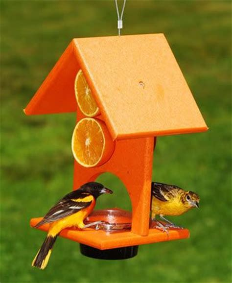 orange and jelly oriole feeder bird stuff pinterest