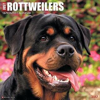 free puppies in saginaw mi rottweiler breeders in michigan freedoglistings