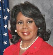 Peoria County Circuit Clerk Search Cook County Clerk May Sue County S Democratic Peoria Radio