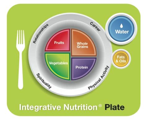 Precision Nutrition Detox by Best 25 Nutrition Plate Ideas On