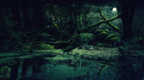 green wallpaper deviantart forest background by vashar23 on deviantart