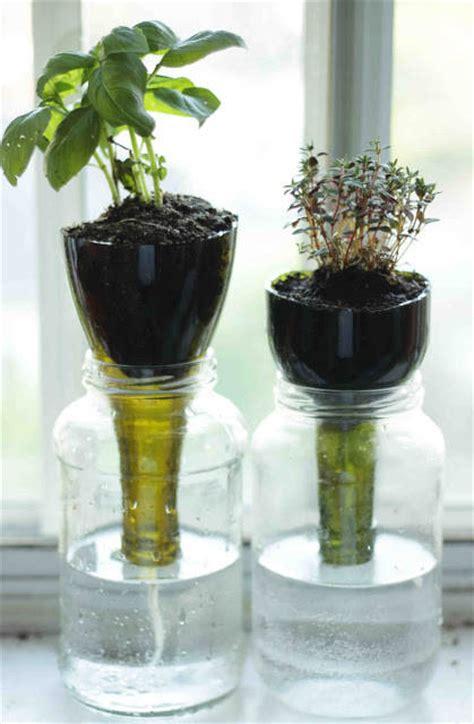 8 Ide Menempatkan Tanaman Herbal di Rumah   Rumah dan Gaya