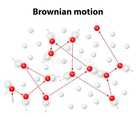 particle model motion diagram brownian motion or pedesis stock vector illustration of