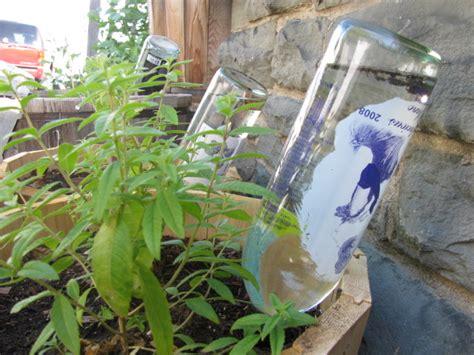 diy plant watering bottle diy plant watering globes frugal upstate