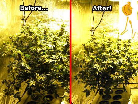 cool growing tools      grow weed