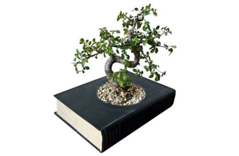 libro bonsai masterclass all you need book and plant sale may 18 9 3 caleflibrary