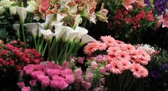 skipps florist biggleswade order online or 01767 313166