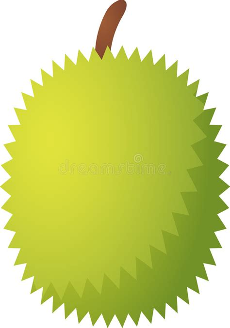 durian fruit icon royalty  stock photography image