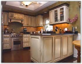 Kitchen Cabinet Finishes Ideas Oak Kitchen Cabinet Refinishing Home Design Ideas