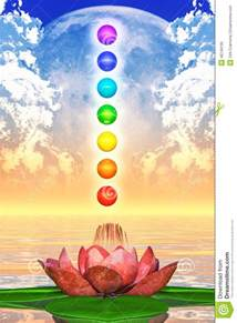 Lotus Chakra Sacred Lotus And Chakra Spheres Stock Illustration Image