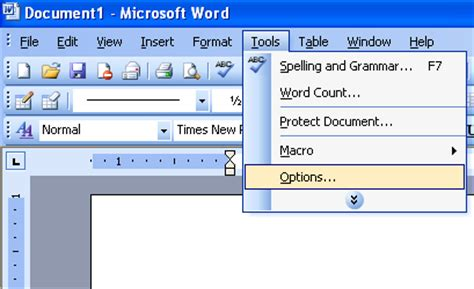 layout of microsoft word 2003 view page margins in microsoft word 2003 microsoft