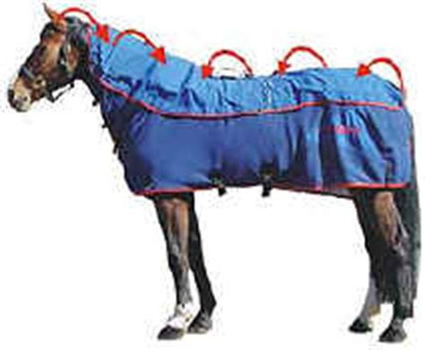 Magnetic Therapy Rugs For Horses by Magnetic Pulsed Rugs