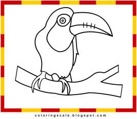 free coloring pages toucan