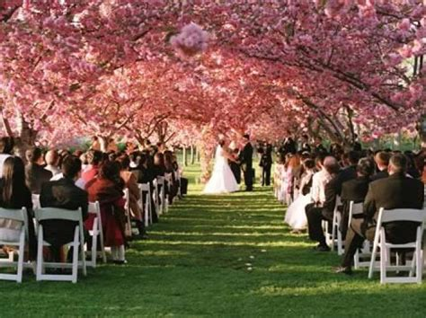 Garden Wedding Venues Ny Smalltowndjs Com Wedding At The Botanical Gardens