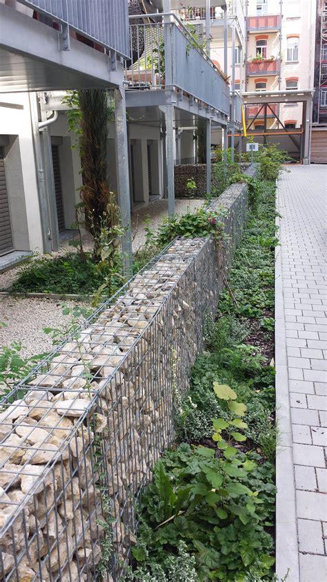 pflanzen als sichtschutz für terrasse schmaler sichtschutz pflanzen die neueste innovation der