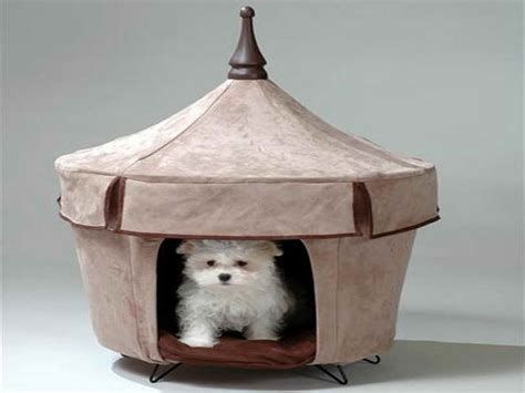 luxury indoor dog house ideas luxury indoor dog houses buy pets online extra