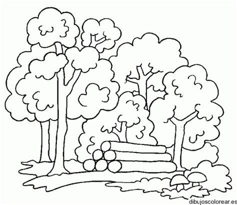 imagenes para colorear bosque dibujos de bosques para imprimir y colorear colorear