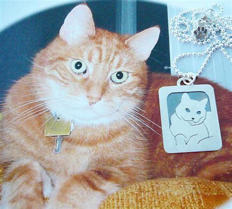 kucing ditembak promotion shop for promotional kucing ditembak on aliexpress alibaba